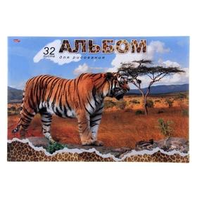 Альбом для рисования А4, 32 листа на скрепке 'Большой тигр', обложка офсет 80г/м2, блок офсет 100г/м2 Ош