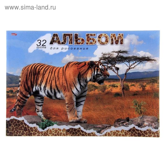 """Альбом для рисования А4, 32 листа на скрепке """"Большой тигр"""", обложка офсет 80г/м2, блок офсет 100г/м2"""