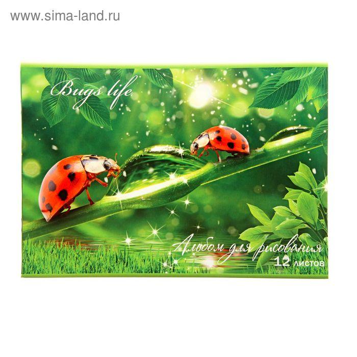 Альбом для рисования А4, 12 листов на скрепке Bugs life, обложка картон 170-190г/м2, блок офсет 100г/м2, МИКС
