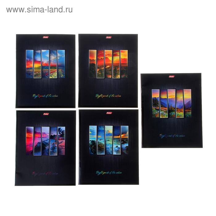 """Тетрадь 48 листов клетка """"Яркие краски природы"""", картонная обложка, выборочный лак, 5 видов МИКС"""