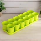 Набор для рассады: стаканы - 12 шт. по 200 мл, поддон 42 х 14 см, зелёный