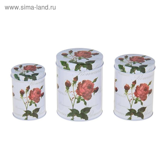 """Набор банок для сыпучих продуктов """"Цветочное настроение"""", 3 шт: 400 мл, 700 мл, 1 л, цвет МИКС"""
