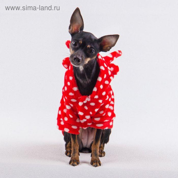 Плюшевая курточка с ушками, размер L (длина спинки 31, обхват груди 40 см), красная в белый горох