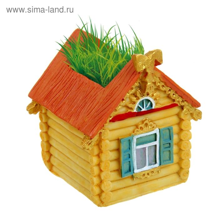 """Растущая трава """"Тепла и уюта"""""""