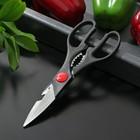 """Ножницы кухонные 21х7,5 см """"Помощник"""""""