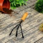Рыхлитель, длина 28 см, 3 зубца, деревянная ручка