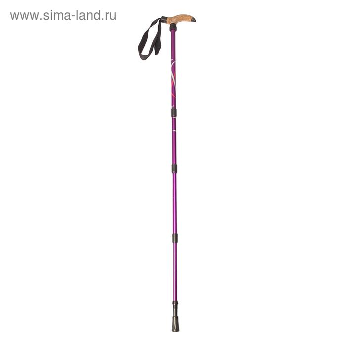 Палка-трость для скандинавской ходьбы телескопическая, 4-х секц, алюм до 135см, цвет сиреневый