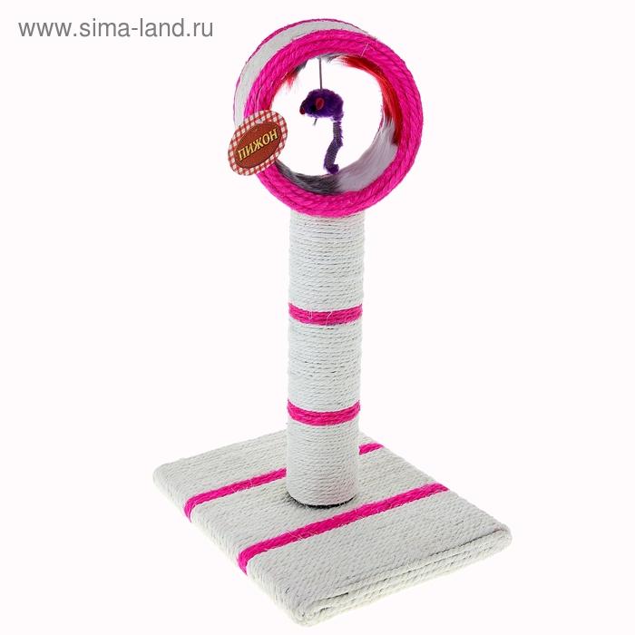 """Когтеточка напольная """"Цирковое кольцо"""" с игрушкой-дразнилкой, основание 30х23 см, высота 46 см, микс цветов"""