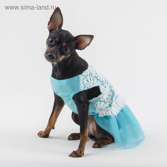 """Платье """"Нежность"""", размер M, голубое (длина спинки - 33 см, объем груди - 42 см)"""
