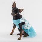 """Платье """"Нежность"""", размер L, голубое (длина спинки - 36 см, объем груди - 48 см)"""