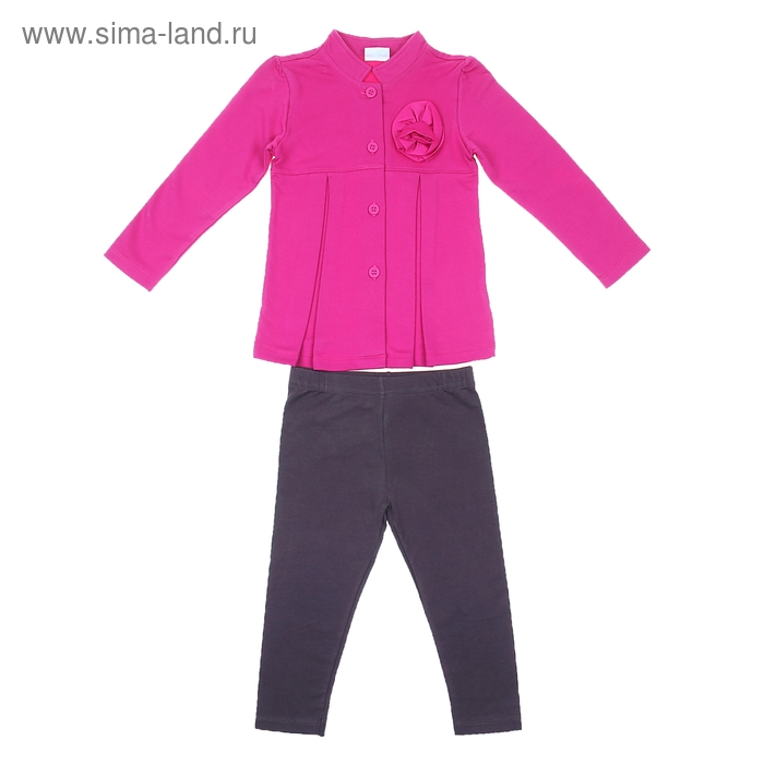 Комплект для девочки: кофта с цветком, леггинсы, рост 110-116 см (5-6л.) 9199CC1302