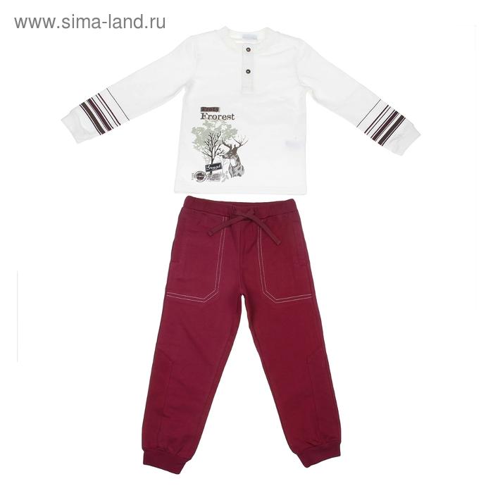 """Комплект для мальчика """"Лесная прогулка"""": кофта, брюки, рост 104-110 см (4-5л.), цвет микс 9199CD1600"""