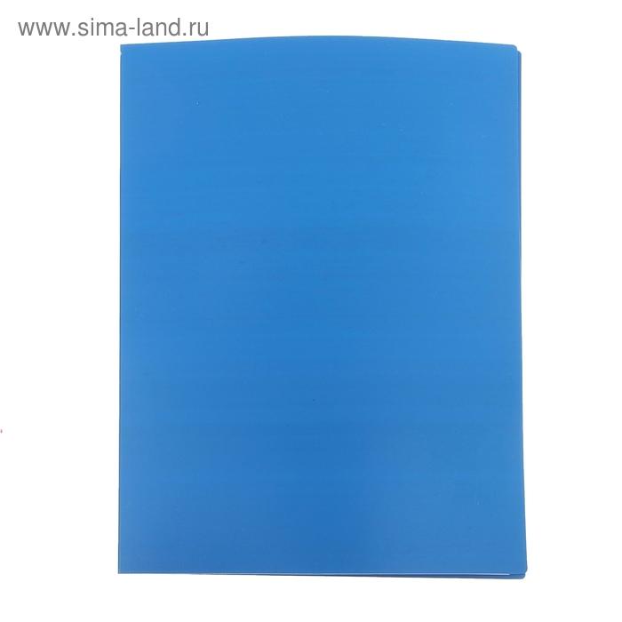 Папка с 20 прозрачными вкладышами А4, 500мкм, синяя