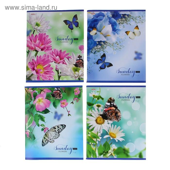 """Тетрадь 96 листов клетка """"Летние цветы"""", картонная обложка, 4 вида МИКС"""