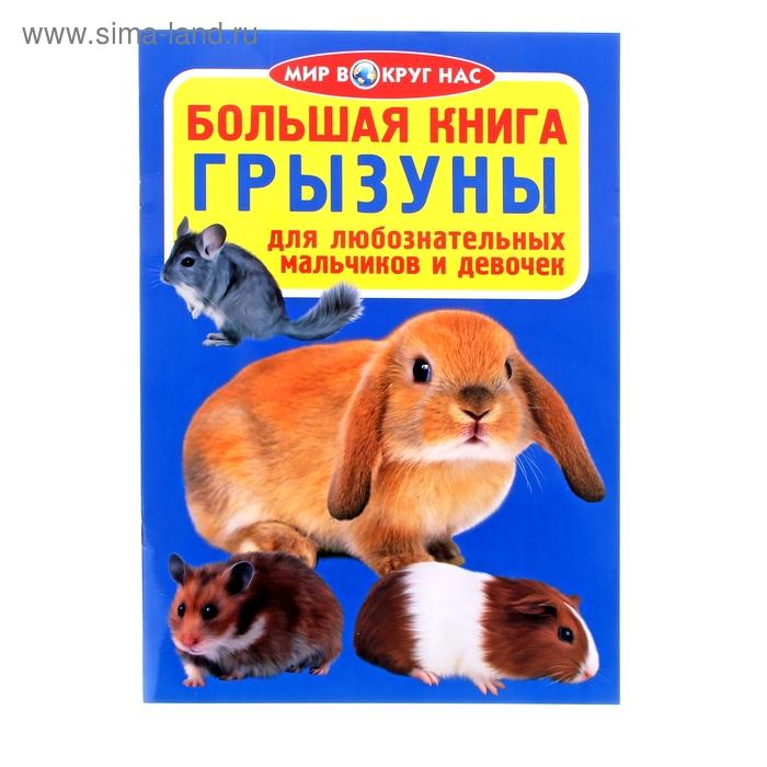 "Большая книга ""Грызуны"""