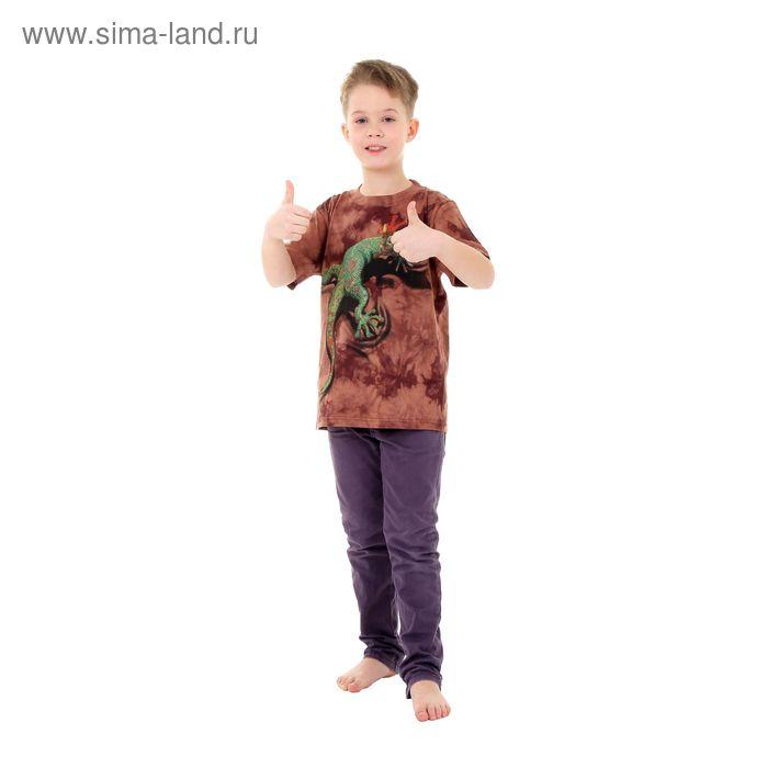 Футболка детская Collorista 3D Reptile, возраст 10-12 лет, рост 146-152 см, цвет коричневый
