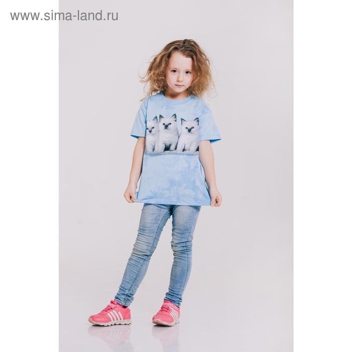 Футболка детская Collorista 3D Kittens, возраст 1-2 года, рост 86-92 см, цвет голубой