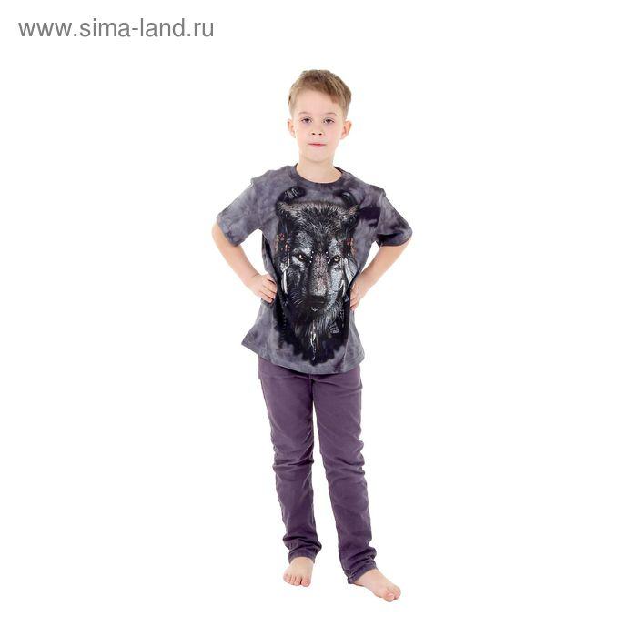 Футболка детская Collorista 3D Shaman, возраст 10-12 лет, рост 146-152 см, цвет серый