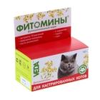 """Витамины """"Фитомины"""" для кастрированных котов, 50 г"""