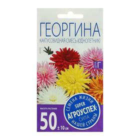 Семена цветов Георгина Кактусовидная смесь, О, 0,2 г