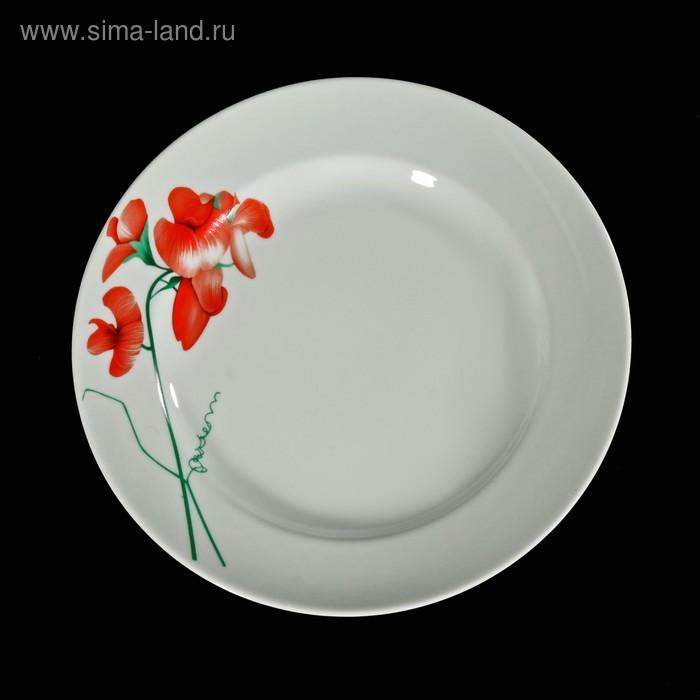 """Тарелка мелкая 24 см """"Рубин"""""""