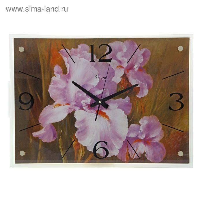 """Часы настенные прямоугольные """"Ирис"""", 40х56 см"""