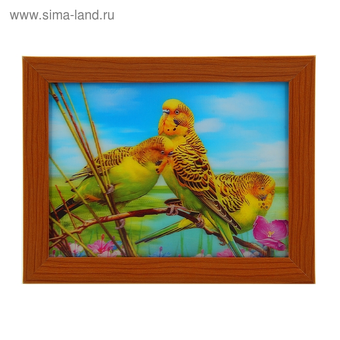 "Картина объёмная 3D ""Попугайчики"""