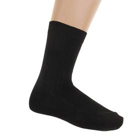 Носки мужские, размер 27, цвет черный С-13