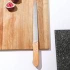 """Нож для мяса большой 36,5 см """"Универсал"""", лезвие 23,5 см"""