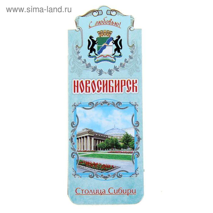"""Закладка магнитная """"Новосибирск. Театр оперы и балета"""""""