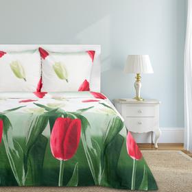 "Постельное бельё ""Этель"" дуэт Тюльпаны 143х215 см - 2 шт., 220х240 см, 70х70 см - 2 шт, 100% хлопок, бязь 125 г/м²"