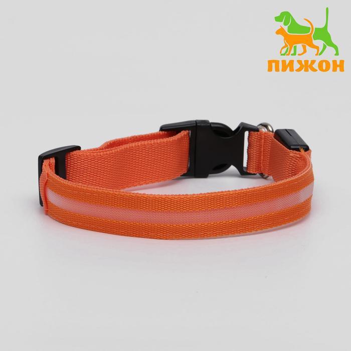 Ошейник с подсветкой, 45-50 см, 3 режима свечения, оранжевый
