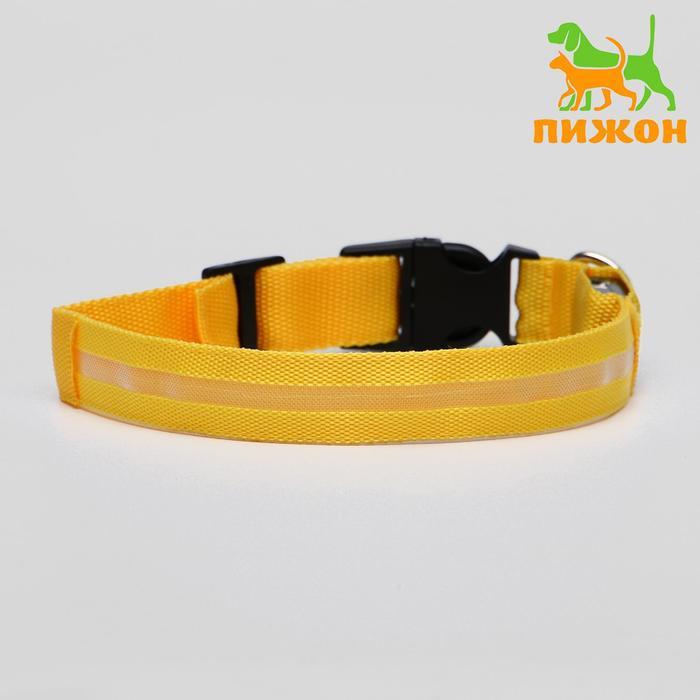 Ошейник с подсветкой, 45-50 см, 3 режима свечения, желтый