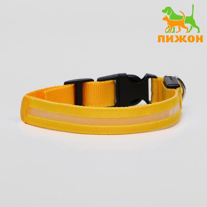 Ошейник с подсветкой, 40-45 см, 3 режима свечения, желтый