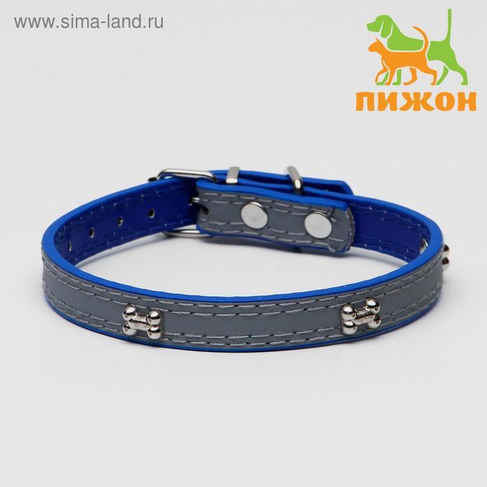 Ошейник со светоотражающей полосой и косточками, 37 х 1,3 см, синий
