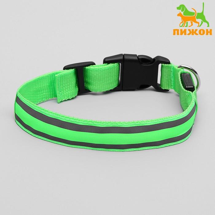 Ошейник с подсветкой и 2 светоотражающими полосами, 40-45 см, 3 режима свечения, зеленый