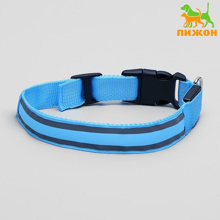 Ошейник с подсветкой и 2 светоотражающими полосами, 50-58 см, 3 режима свечения, голубой