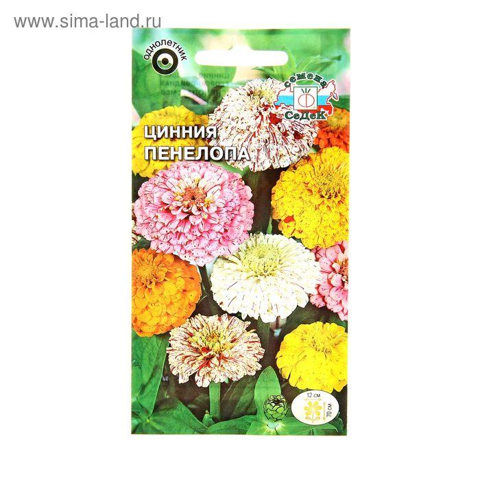 Семена цветов Цинния Пенелопа смесь с полосатой расцветкой цветка 0,2 г.