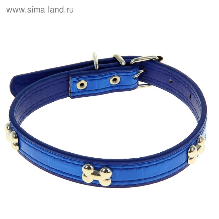 Ошейник со светоотражающей полосой и косточками, 45 х 2 см, синий