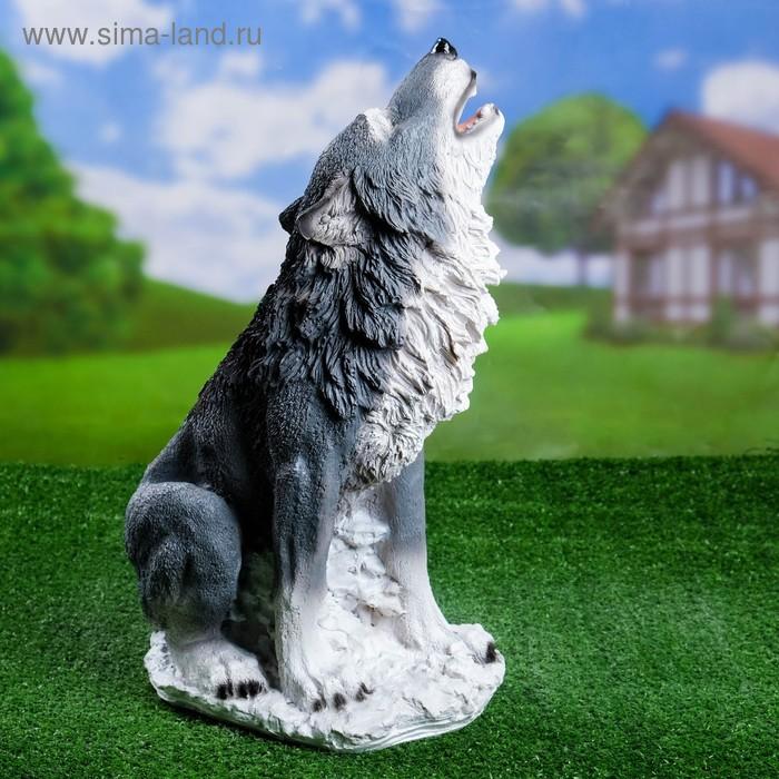 """Садовая фигура """"Воющий волк"""" серая, белый хвост"""