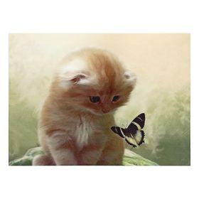 """Картина на подрамнике """"Котик с бабочкой"""""""
