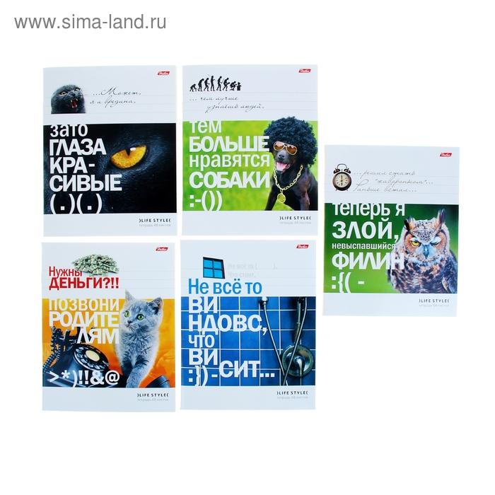 """Тетрадь 48 листов клетка """"Приколы-24"""", картонная обложка, 5 видов МИКС"""