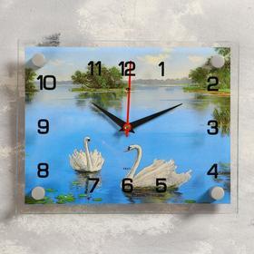Часы настенные прямоугольные 'Лебеди в озере', 20х26 см микс Ош