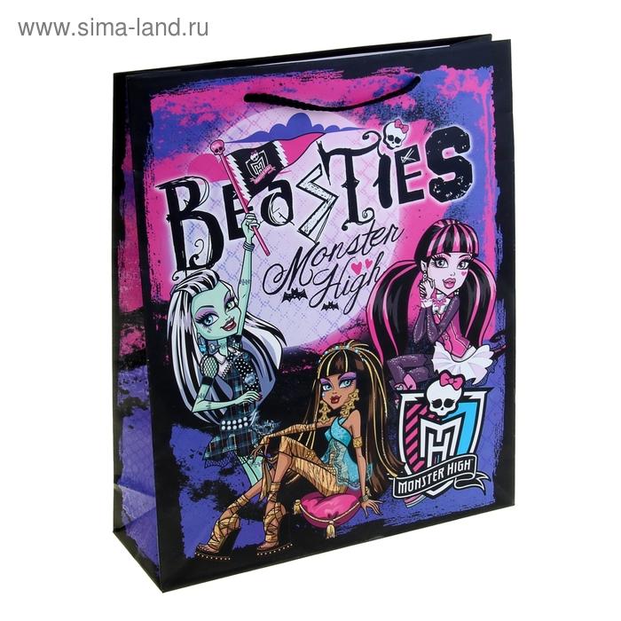"""Пакет подарочный """"Школа монстров"""" 28х34 см, Mattel Monster High"""