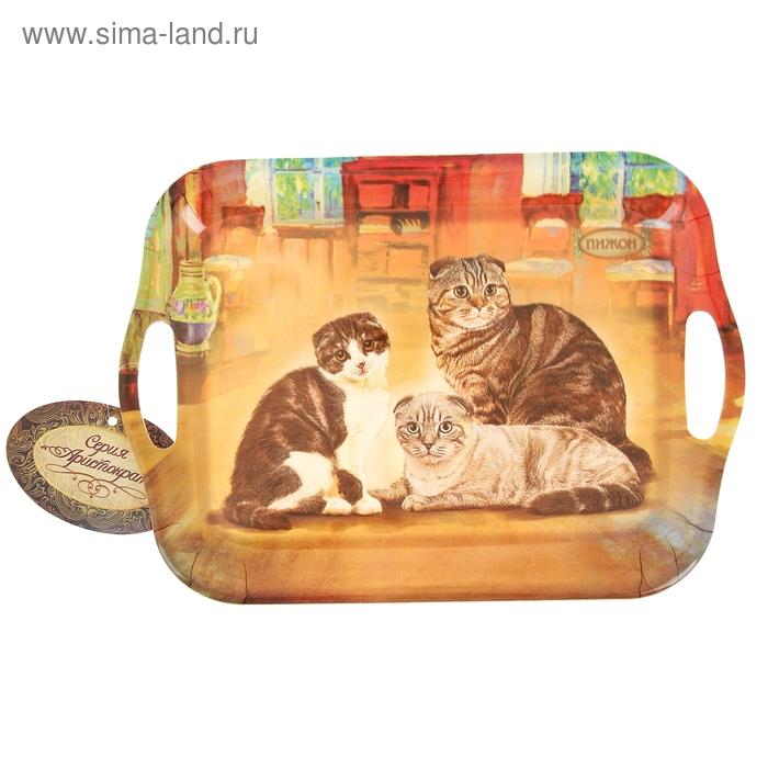 """Поднос серия """"Шотландская кошка"""""""