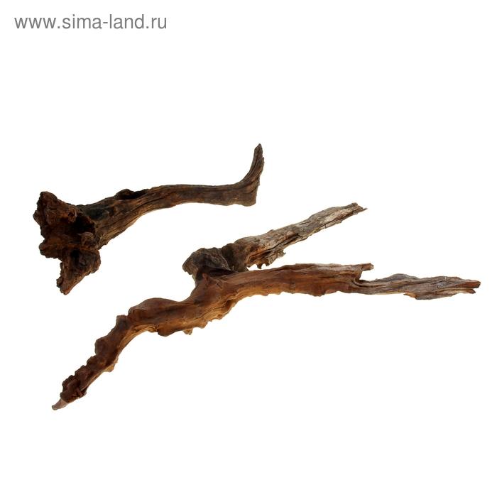 "Коряга натуральная ""Китайская"" для декора,UDeco Chinese Driftwood M, размер 30-40 см, 1 шт"