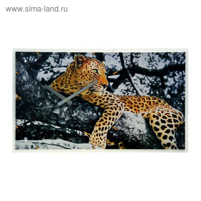 """Часы настенные прямоугольные """"Леопард на дереве"""", 35х60 см"""