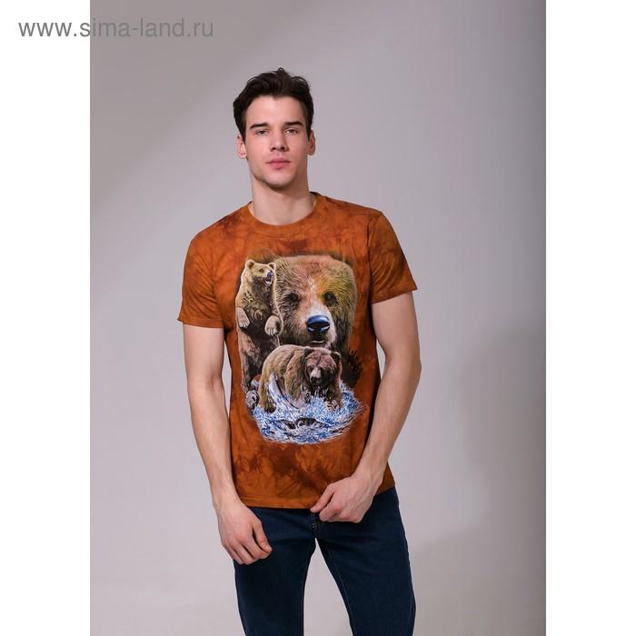 Футболка мужская Collorista 3D Brown Bears, размер L (48), цвет коричневый