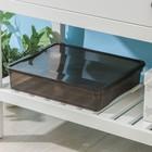 """Ящик для хранения, прямоугольный 9 л """"Колор. Стайл"""", цвет МИКС"""