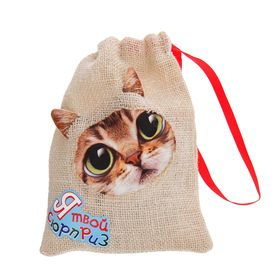 """Прикол кот в мешке """"Я твой сюрприз"""" + звуковой элемент"""
